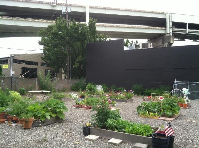 ZCC garden m